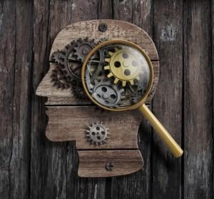 saerligt sensitiv hjerne